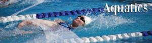 Bellingham Athletic Club Aquatics